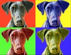 Dog PopArt