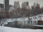 Sergey Sologub: from the inside - central park